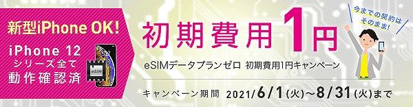 IIJmio eSIM 初期費用1円 キャンペーン
