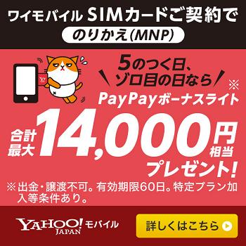 ワイモバイル SIM単体5のつく日