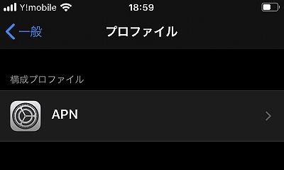 ワイモバイル iPhone SE (第2世代) APN設定