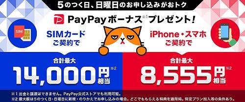 ワイモバイル 5のつく日 日曜日 Paypay キャンペーン